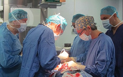 Master Course in Penoplasty, Photo Gallery